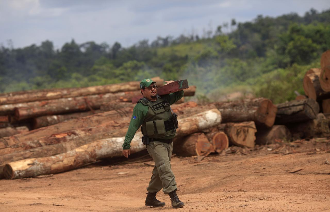 Agent Alex Lacerda of Brazil's Institute for the Environment and Renewable Natural Resources, or IBAMA, carries a sample of wood that he and a group of environmental police offers confiscated at an illegal sawmill during a sting operation against sawmills, log haulers and loggers who trade in illegally extracted wood from the Alto Guama River indigenous reserve in Nova Esperanca do Piriau, Para state, September 25, 2013. Picture taken September 25, 2013. To match Special Report BRAZIL-DEFOREST/ REUTERS/Ricardo Moraes (BRAZIL - Tags: ENVIRONMENT CRIME LAW POLITICS BUSINESS)