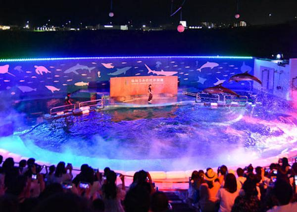 ▲ The summer-only night program Mystic Blue Lagoon is a performance of sea lions and dolphins with light and mist. It was so popular in 2018 that it was repeated again in September for 7 days.