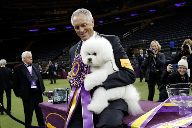 Flynn, a bichon frise and winner of Best In Show and handler Bill McFadden pose together after winning the 142nd Westminster Kennel Club Dog Show in New York, U.S., February 14, 2018. REUTERS/Brendan McDermid
