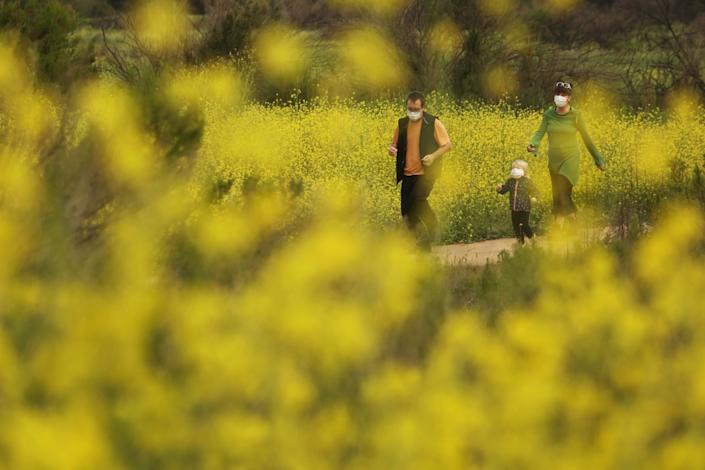 """Family members wearing protective masks are surrounded by a bloom of black mustard plants in Woodley Park in Van Nuys on Thursday. <span class=""""copyright"""">(Genaro Molina / Los Angeles Times)</span>"""