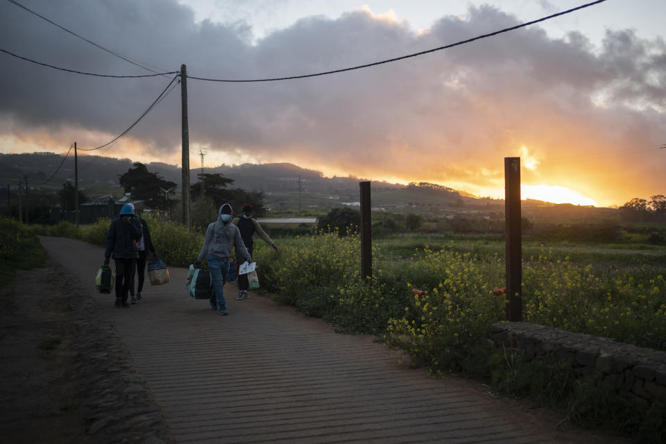 Migrants walk near Las Raices camp in San Cristobal de la Laguna, in the Canary Island of Tenerife, Spain, Thursday, March 18, 2021. Several thousand migrants have arrived on the Spanish archipelago in the first months of 2021. Due to the terrible living conditions and the poor quality of food and water at the Las Raices camp, some migrants have decided to leave the camp and sleep in shacks in a nearby forest instead. (AP Photo/Joan Mateu)