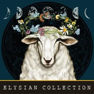Announcing the Debut of Elysian Collection, an elevated new offering from Bonterra Organic Vineyards