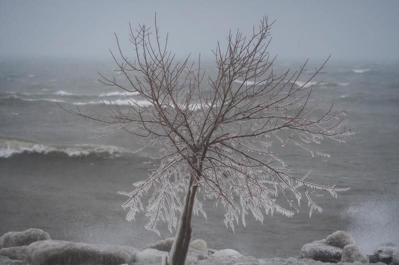 Average fall, cold winter ahead, The Weather Network predicts