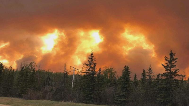 People living in and near High Level, Alta., have been ordered to leave their homes because of danger posed by an out-of-control wildfire.