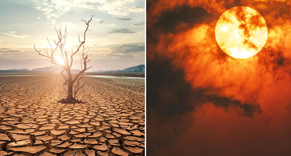 (left) a dead tree in a drought-stricken field Source: Getty Images (right) Sun through dark smoke clouds from bushfires with red glow, during climate change in Australia. Source: Getty Images