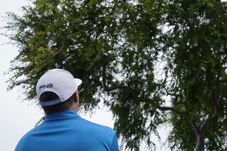 Mackenzie Hughes, of Canada, looks upward towards his ball that is stuck in the tree along the 11th fairway during the final round of the U.S. Open Golf Championship, Sunday, June 20, 2021, at Torrey Pines Golf Course in San Diego. (AP Photo/Jae C. Hong)