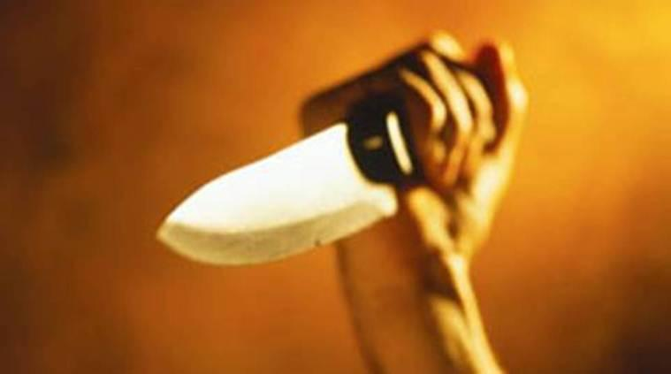 dwarka crime, crime in dwarka, dwarka man stabs mother, dwarka stabs brother, delhi news