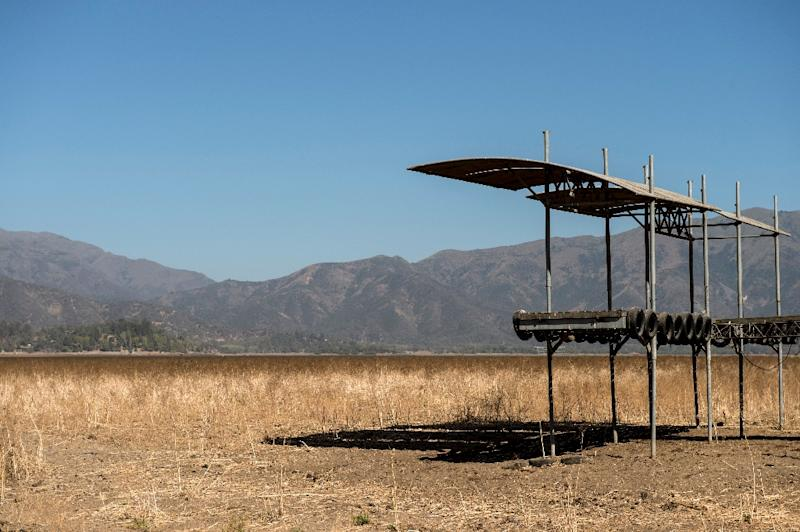 View of a pier at the dried Aculeo Lake about 70 km southwest of Santiago, Chile (AFP Photo/Martin BERNETTI)