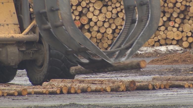 Ottawa called on to push for renewed softwood exclusion in U.S.