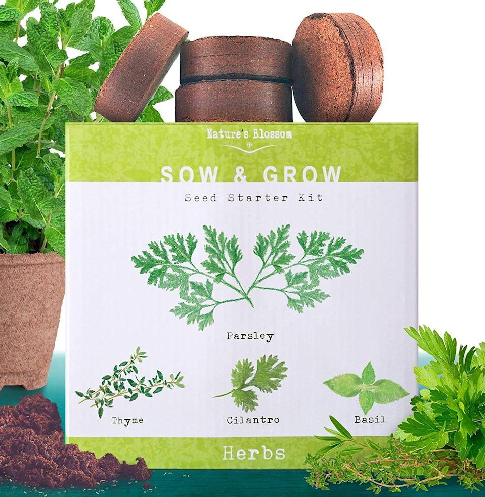 """<p><strong>Nature's Blossom</strong></p><p>amazon.com</p><p><a href=""""https://www.amazon.com/Natures-Blossom-Herb-Garden-Herbs/dp/B01EFX6VPA?tag=syn-yahoo-20&ascsubtag=%5Bartid%7C10054.g.26887058%5Bsrc%7Cyahoo-us"""" rel=""""nofollow noopener"""" target=""""_blank"""" data-ylk=""""slk:Buy"""" class=""""link rapid-noclick-resp"""">Buy</a></p><p>Fresh herbs are any chef's secret ingredient. This starter set comes with everything she'll need to grow them.</p>"""