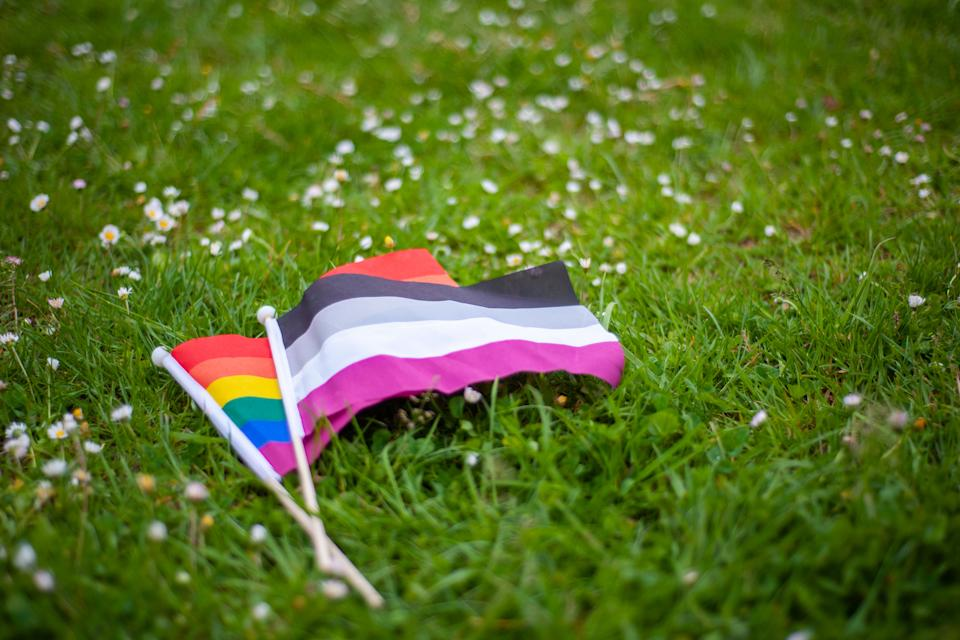 The rainbow LGBTQIA pride flag and the asexual pride flag (Image via Getty Images)