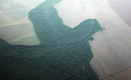 FILE PHOTO: An aerial view of a section of deforested Amazon rainforest turned into farmland near the city of Alta Floresta