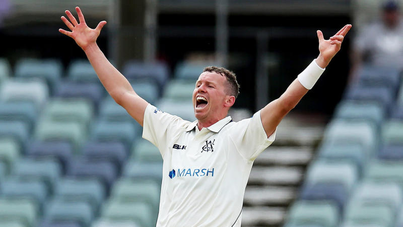 Peter Siddle has been recalled to the Test squad. (Getty Images)