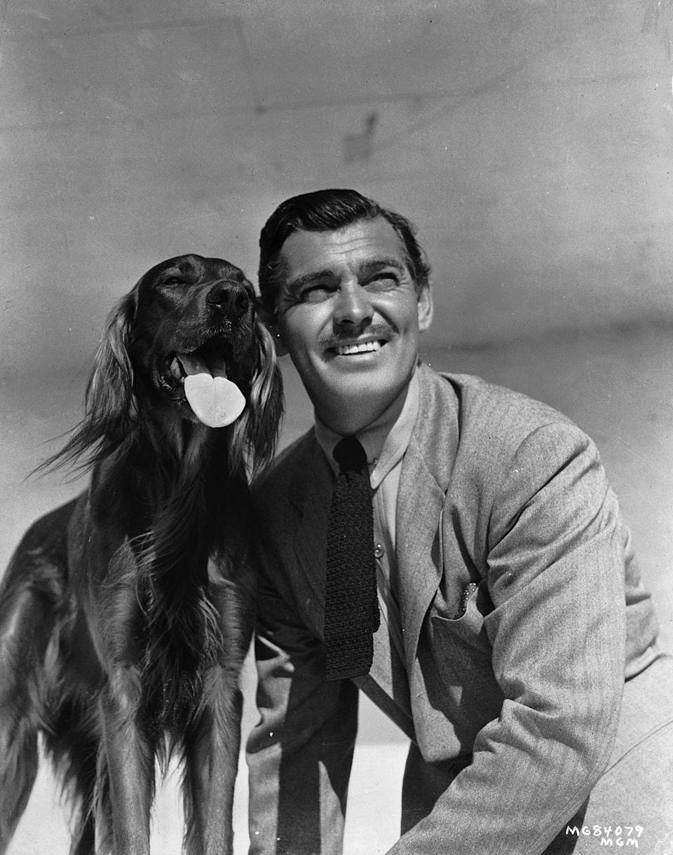 <p>Actor Clark Gable is photographed with his beloved Irish Setter, Queen, in 1941. The animal lover also owned horses at his ranch in Encino, California. </p>