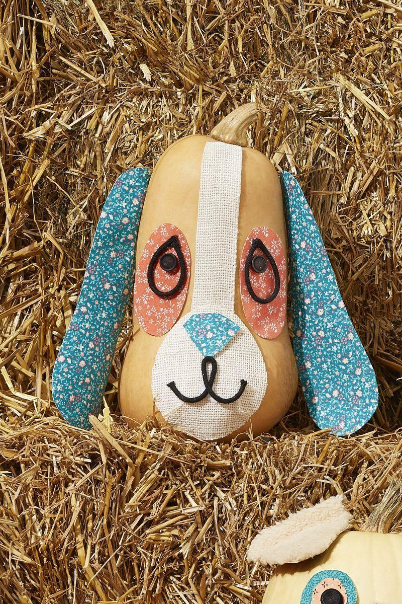 """<p>How much does this hound look like Walter? 😂 Use a butternut squash to recreate the """"long"""" face of this pup, then add burlap and floral fabric for the facial features.</p><p><a class=""""link rapid-noclick-resp"""" href=""""https://go.redirectingat.com?id=74968X1596630&url=https%3A%2F%2Fwww.walmart.com%2Fsearch%2F%3Fquery%3Dcraft%2Bscissors&sref=https%3A%2F%2Fwww.thepioneerwoman.com%2Fholidays-celebrations%2Fg32894423%2Foutdoor-halloween-decorations%2F"""" rel=""""nofollow noopener"""" target=""""_blank"""" data-ylk=""""slk:SHOP CRAFT SCISSORS"""">SHOP CRAFT SCISSORS</a></p>"""