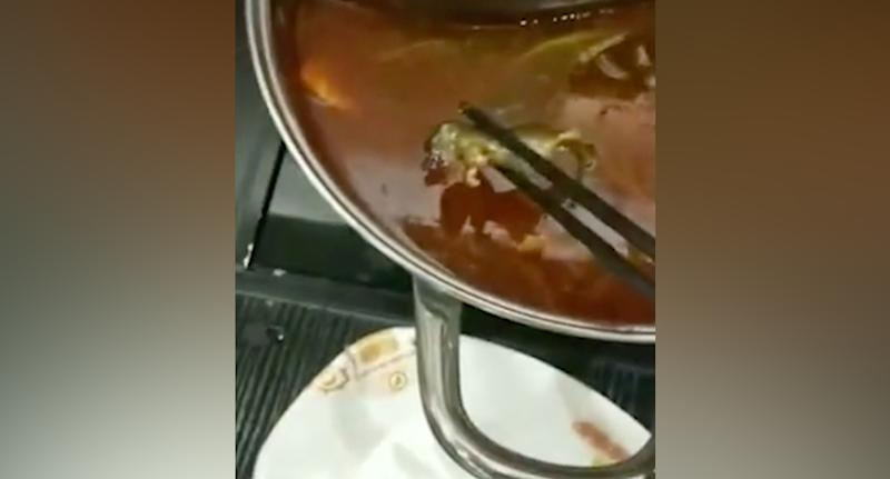 Restaurant loses $190m in value after dead rat found in soup