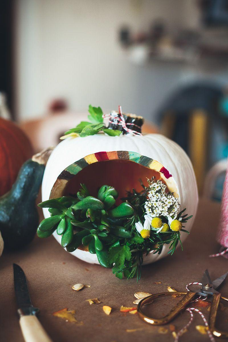 "<p>Place teeny tiny plants in this carved terrarium to add some unexpected greenery to your Halloween decor.</p><p><strong>Get the tutorial at <a href=""http://mynameisyeh.com/mynameisyeh/2014/10/a-pumpkin-carving-party"" rel=""nofollow noopener"" target=""_blank"" data-ylk=""slk:My Name Is Yeh"" class=""link rapid-noclick-resp"">My Name Is Yeh</a>.</strong></p><p><strong><a class=""link rapid-noclick-resp"" href=""https://www.amazon.com/Succulent-Plants-Fully-Rooted-Planter/dp/B079RKPQSP?tag=syn-yahoo-20&ascsubtag=%5Bartid%7C10050.g.279%5Bsrc%7Cyahoo-us"" rel=""nofollow noopener"" target=""_blank"" data-ylk=""slk:SHOP SUCCULENTS"">SHOP SUCCULENTS</a><br></strong></p>"