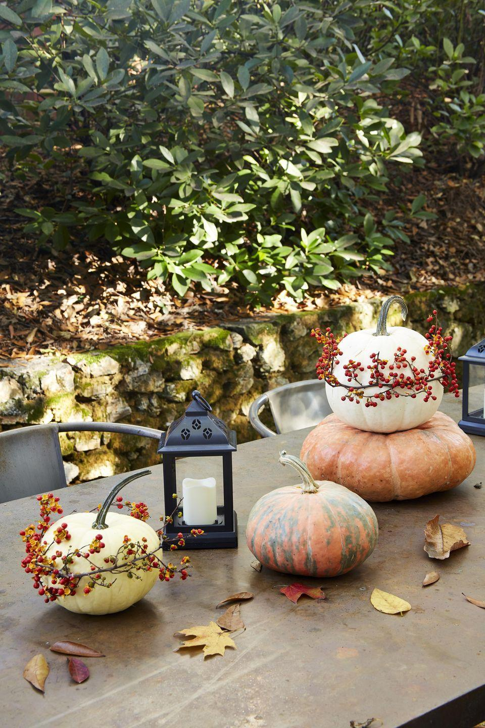 <p>This simple craft, which is perfect for decorating your fall table or front porch, only takes three supplies and just a few minutes to make. If you can't find bittersweet vine, try using grapevine and attaching berries with hot glue.<strong> <br></strong></p><p><strong>Make the pumpkins: </strong>Wrap white pumpkins with bittersweet vine, holding it in place with T-pins and hot glue.</p>