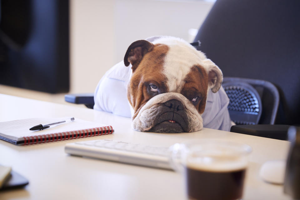 Here's how to get out of your productivity rut. (Photo: Getty)