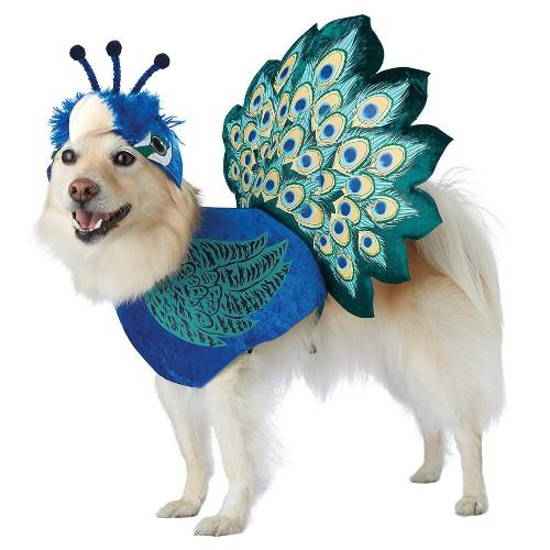 Peacock Costume. (Photo: Amazon)