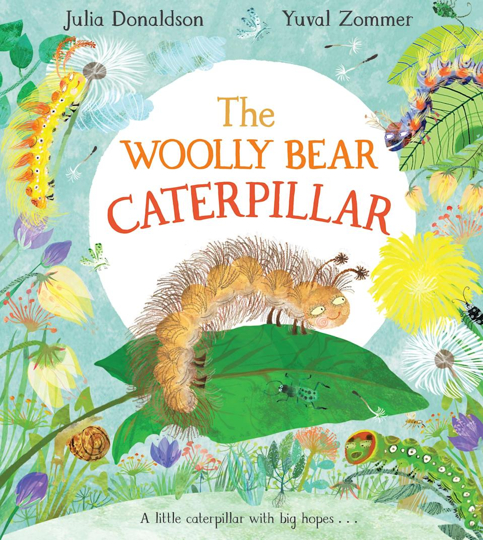 Donaldson's new book 'The Woolly Bear Caterpillar' is a take on the ugly duckling story (Macmillan)