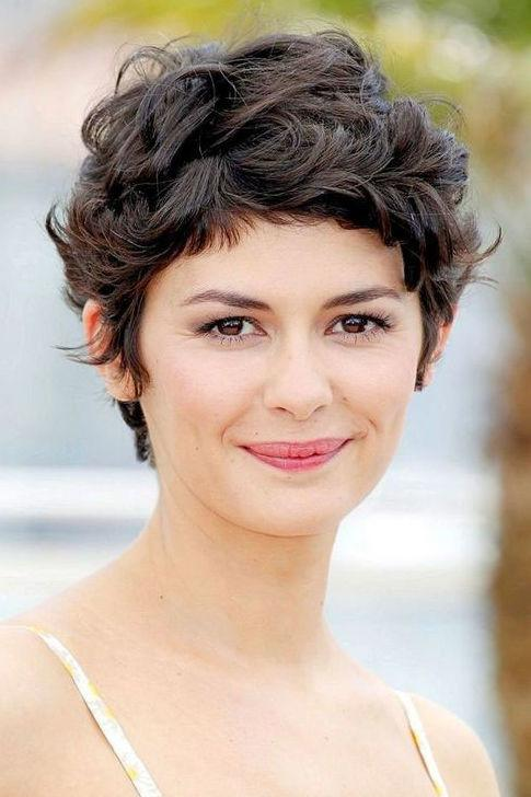 <p>This boyish pixie is great for those with thick, curly hair. The weight of the thickness helps achieve a multi-dimensional style that looks super healthy and full of texture.</p>