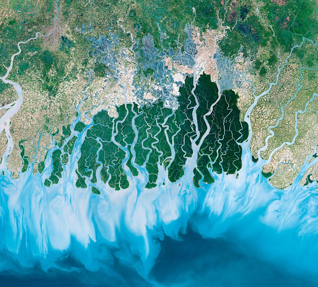 <p>Satellite image of the Sundarbans, the largest delta in the world. It lies across India and Bangladesh. Source: BBC </p>