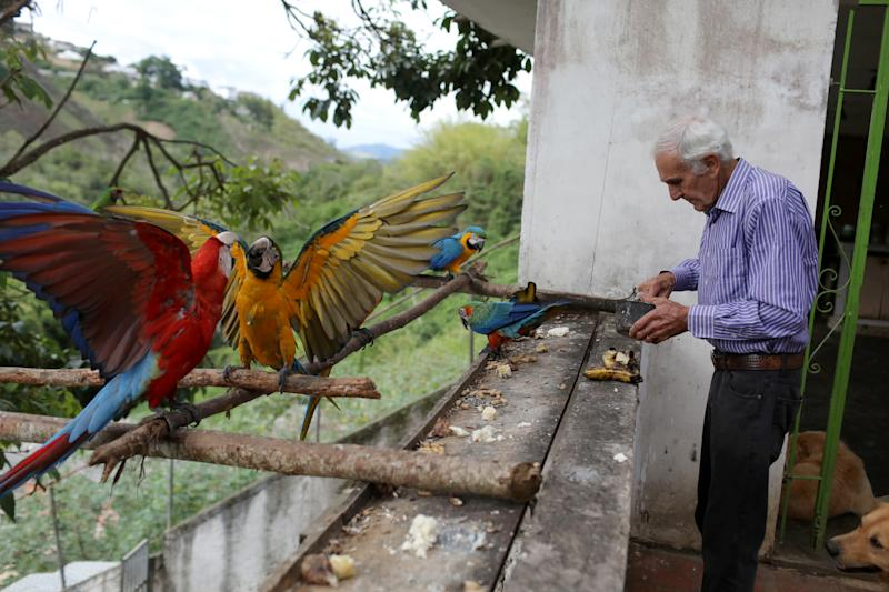 Vittorio Poggi puts food to the macaws at his house outside Caracas, Venezuela, June 18, 2019. (Photo: Manaure Quintero/Reuters)