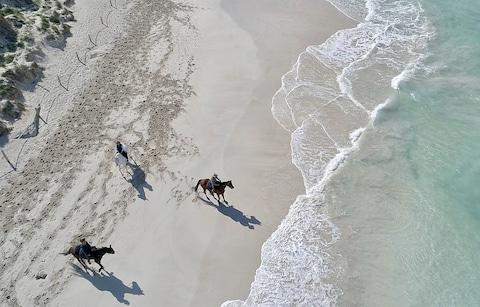 horses on beach, mallorca - Credit: Golearnto