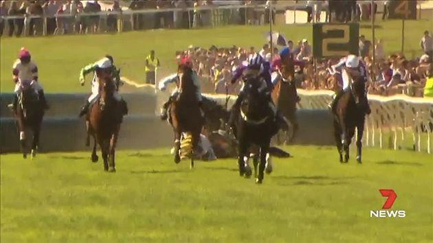 Once one horse fell, others went with it. Pic: Channel 7