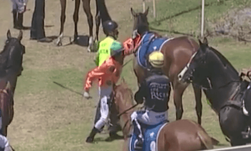 Suspended apprentice jockey apologises for punching horse in the ribs