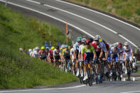 The peloton climbs during the men's cycling road race at the 2020 Summer Olympics, Saturday, July 24, 2021, in Oyama, Japan. (AP Photo/Christophe Ena)