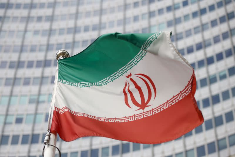 FILE PHOTO: Iran's flag pictured in March