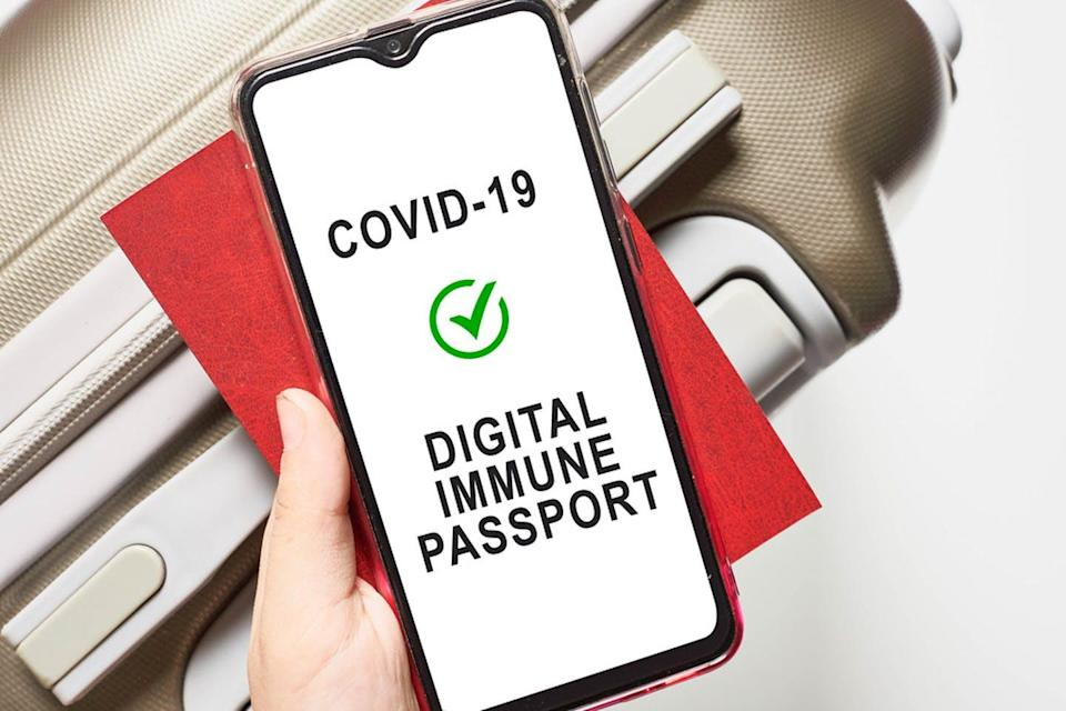 A person holds a phone that says COVID-19 Digital Immune Passport.