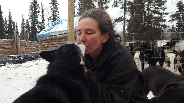 Yukon kennel owner says she euthanized 10 dogs to comply with court-ordered surrender