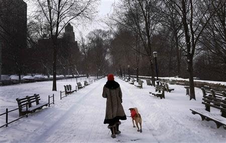 A woman walks her dog in a snow covered Riverside Park in upper Manhattan in New York City, January 3, 2014. REUTERS/Mike Segar