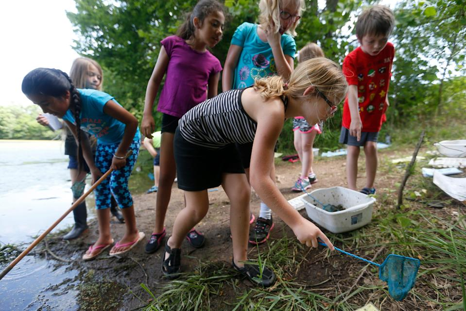 Charlee Crawford, a student at Cowden Elementary, searches for critters with a net at the Watershed Center at Valley Water Mill Park during summer school on July 13.