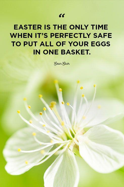 """<p>""""Easter is the only time when it's perfectly safe to put all of your eggs in one basket.""""</p>"""