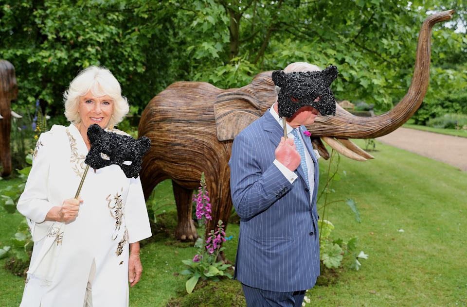 LONDON, ENGLAND - JUNE 13:  Camilla, Duchess of Cornwall and Prince Charles, Prince of Wales hold face masks as they host a reception for the Elephant Family Animal Ball at Clarence House on June 13, 2019 in London, England. Elephant Family is an international NGO dedicated to protecting the Asian elephant from extinction in the wild. (Photo by Chris Jackson - WPA Pool/Getty Images)