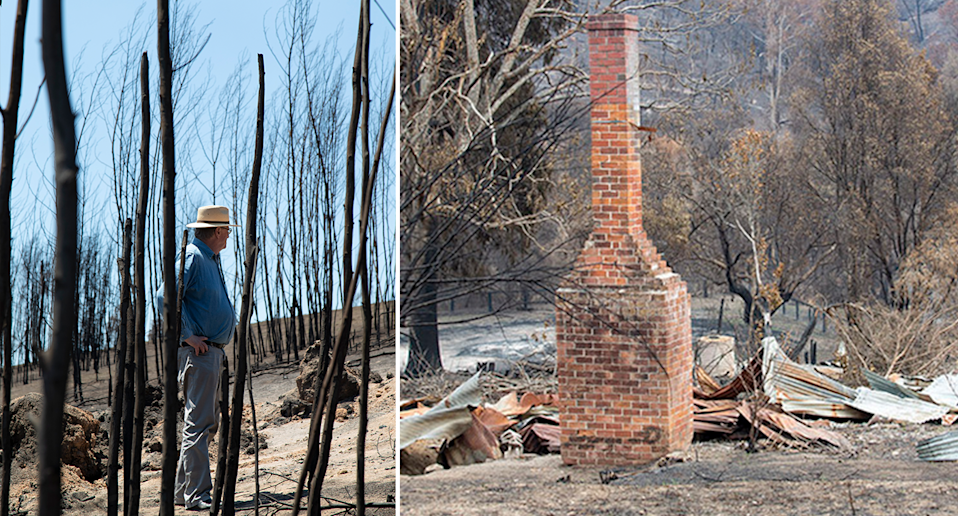 Split screen. Left shows a side view of Peter Hylands in the forest. Right is a home destroyed by the fires. Only a chimney survives.