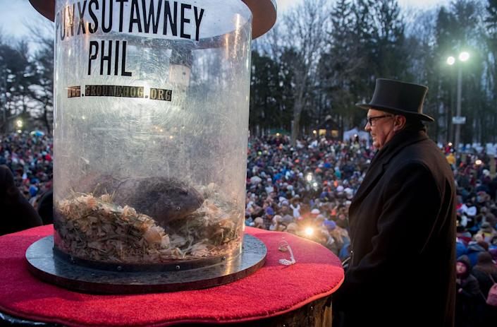 <p>Punxsutawney Phil saw his shadow, predicting six more weeks of winter, during 131st annual Groundhog Day festivities on Feb. 2, 2017, in Punxsutawney, Pa. (Jeff Swensen/Getty Images) </p>