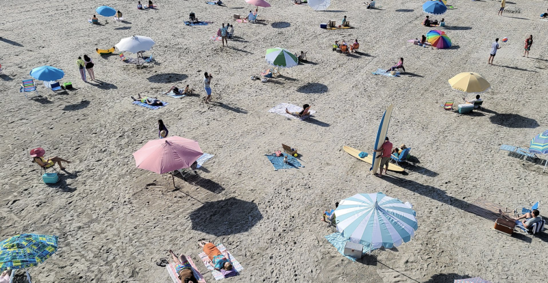 Spot the pup on a beach towel? Look closer... Picture: Samsung