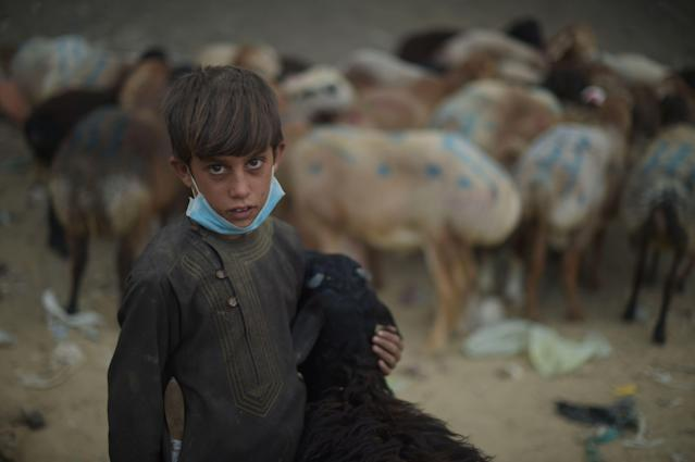 <p>An Afghan vendor holds a sheep as he waits for customers at a livestock market ahead of the Eid al-Adha Muslim festival, on the outskirts of Kabul on August 30, 2017.<br> Muslims across the world are preparing to celebrate the annual festival of Eid al-Adha, or the Festival of Sacrifice, which marks the end of the Hajj pilgrimage to Mecca and in commemoration of Prophet Abraham's readiness to sacrifice his son to show obedience to God. (Photo: Shah Marai/AFP/Getty Images) </p>