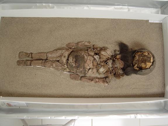 The disintegrating body of a Chinchorro mummy at San Miguel de Azapa Museum in Arica, Chile.