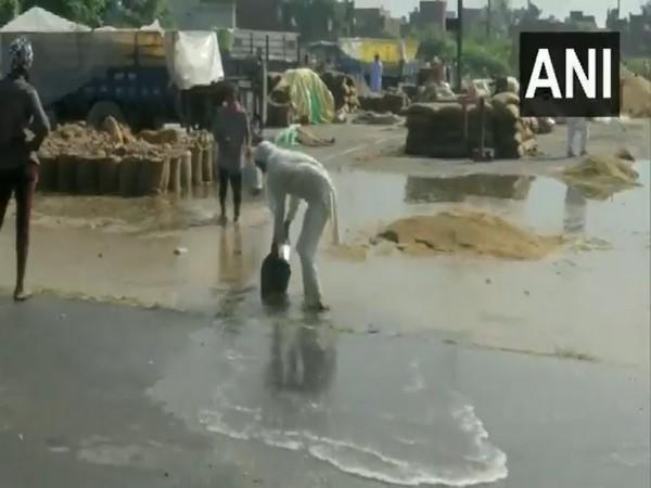The condition of the Mandi after early morning rain in Amritsar (Photo:ANI/Twiiter)