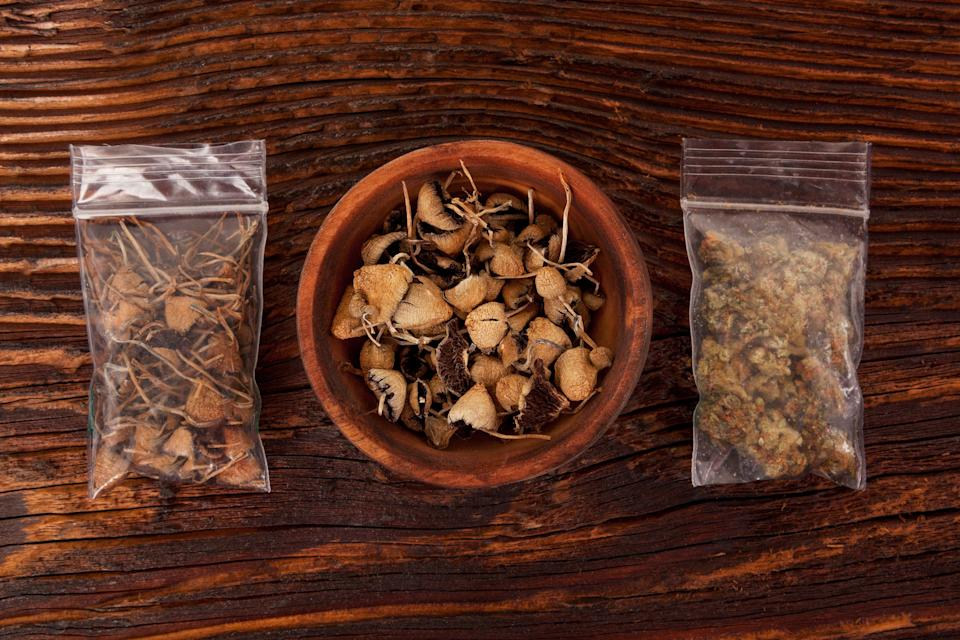 Dry psilocybin magic mushrooms and marijuana buds in plastic bags on brown table. Medical alternative remedy.