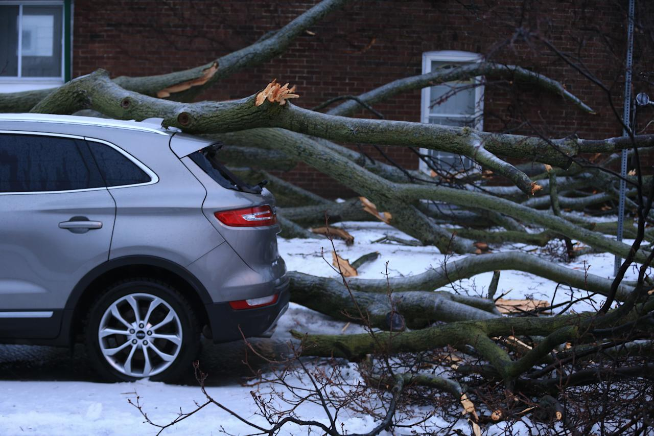 <p>An SUV slammed by fallen tree limb on Queensdale in East York during an ice storm in Toronto on April 15. (Photo from Rene Johnston/Toronto Star via Getty Images) </p>