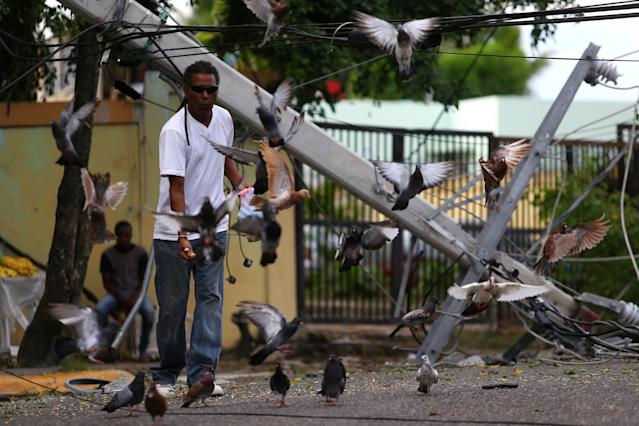 <p>A man feeds pigeons next to a fallen power pole in the aftermath of Hurricane Irma in Puerto Plata, Dominican Republic, Sept. 8, 2017. (Photo: Ivan Alvarado/Reuters) </p>