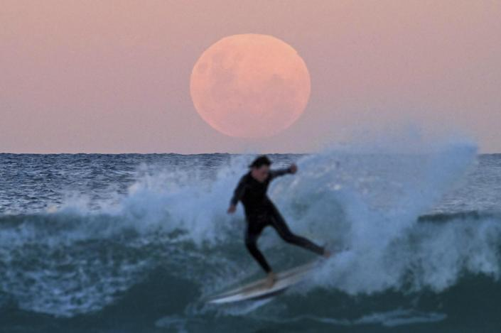 Surfers are seen as