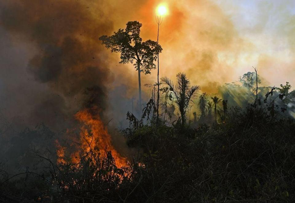 Smoke and flames rise from an illegally lit fire in Amazon rainforest reserve, south of Novo Progresso in Para state, Brazil, on August 15, 2020 (CARL DE SOUZA / AFP) (Photo by CARL DE SOUZA/AFP via Getty Images)